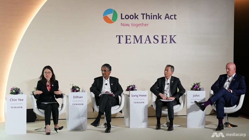 Temasek's net portfolio value hits record high for third year running