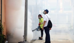 'Stay vigilant' to prevent year-end rise in dengue cases: NEA