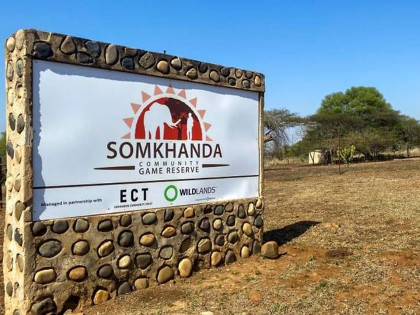 South African game reserve turns to meat sales to survive pandemic