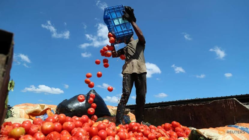 The Big Read: Global supply chain shock has farmers dumping food as consumers fret over shortages, price hikes