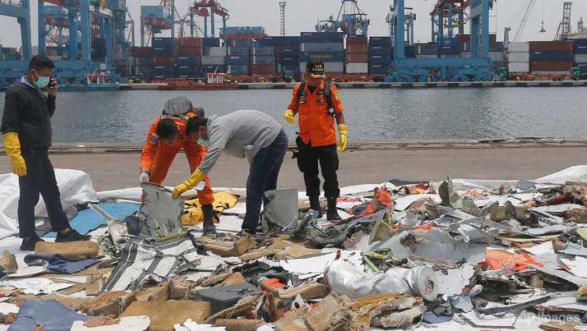 Indonesia's transport ministry orders removal of Lion Air technical director after deadly crash