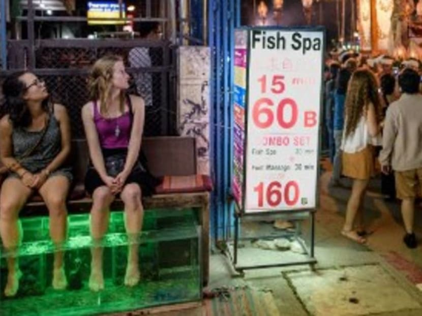 What you need to know about fish spas – and who should avoid them