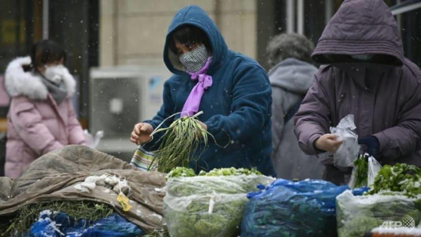 Keep global food supply chains intact: WTO, UN agencies