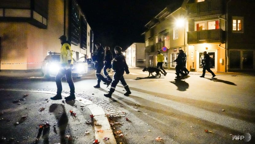 Danish man armed with bow and arrows kills five people in Norway attacks