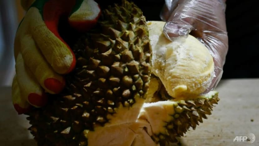 Commentary: Durians, blockchain and politics - inside the choppy world of Chinese investors in Malaysia