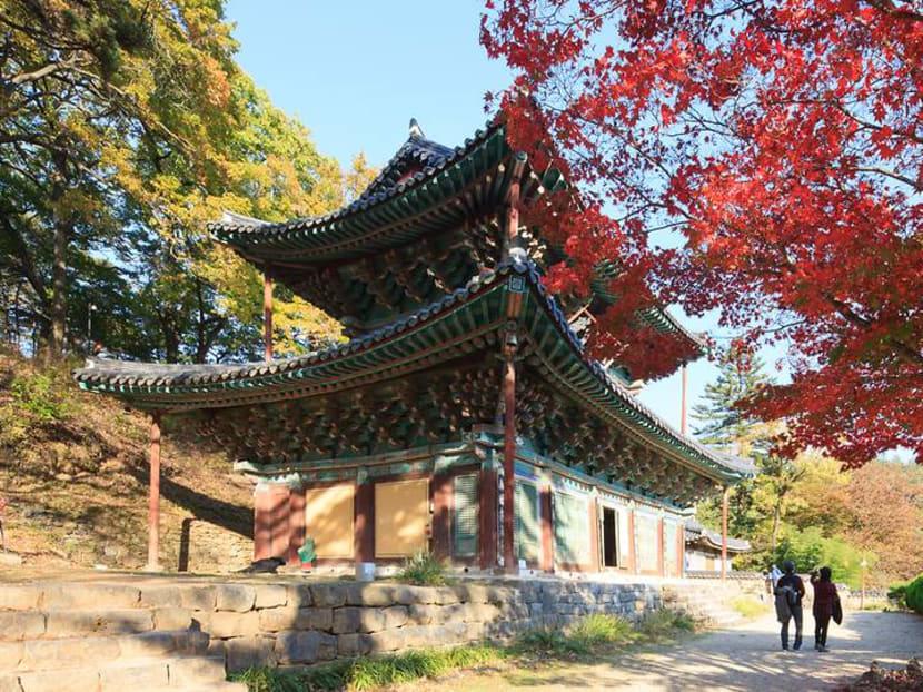 Korea Grand Sale to include street food tour, translation services and free WiFi