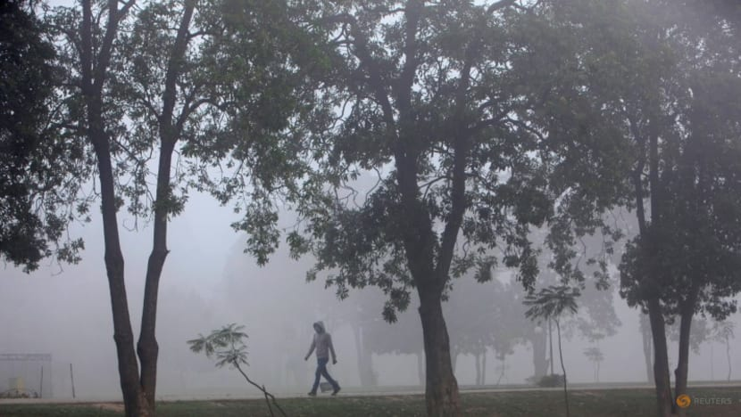Pakistan seeks to bring fresh air to polluted cities with 10 billion trees