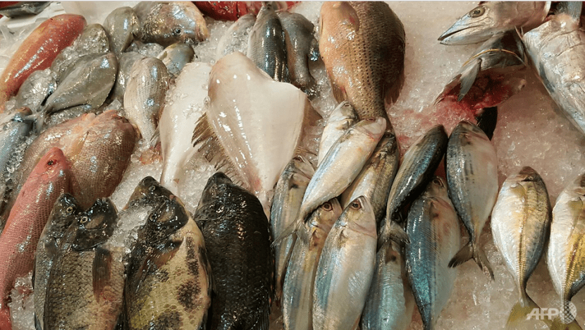 Expect usual price hike for fish during Chinese New Year, not due to Malaysia's export ban: Fish merchants