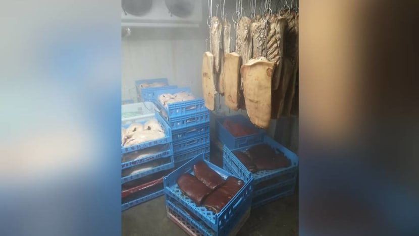 Meat processing company fined for 'multiple lapses' including widespread cockroach infestation