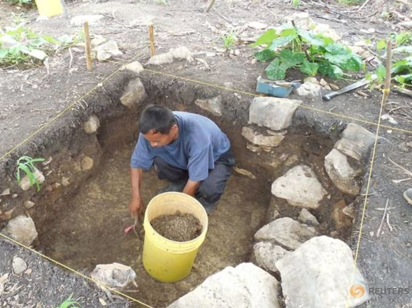 Maya ruins in Belize offer peek at ancient wealth inequality