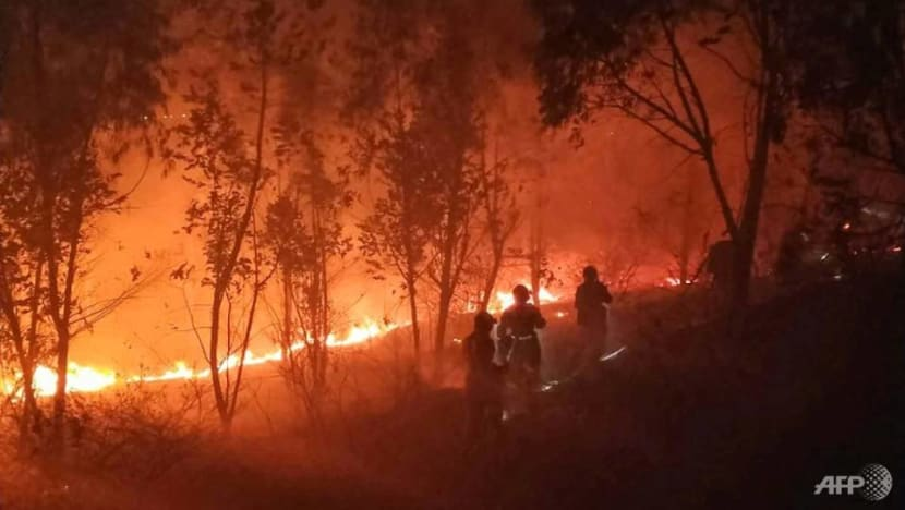 19 killed in massive China forest fire
