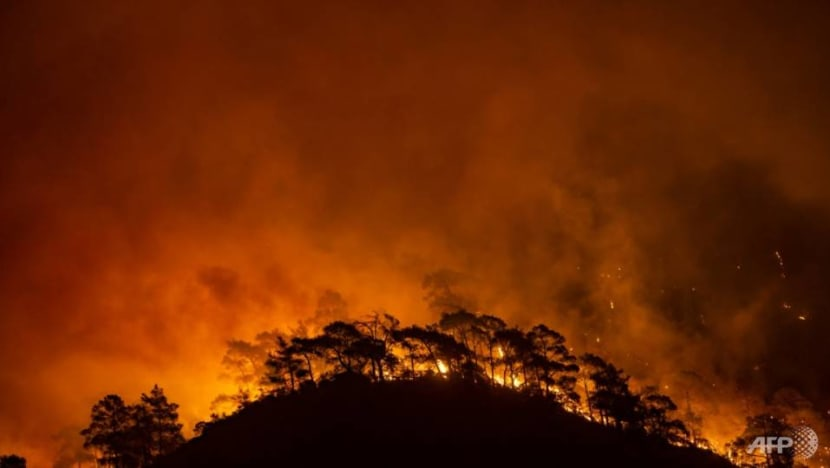 Deadly summer of extreme weather as climate change bites