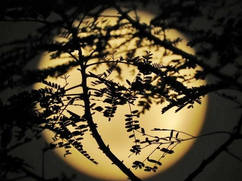 In photos: Harvest Moon rises above Singapore
