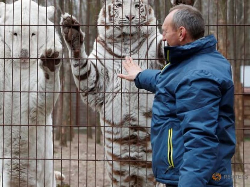 Reeling from pandemic, Hungarian zookeeper puts price tag on his life's work