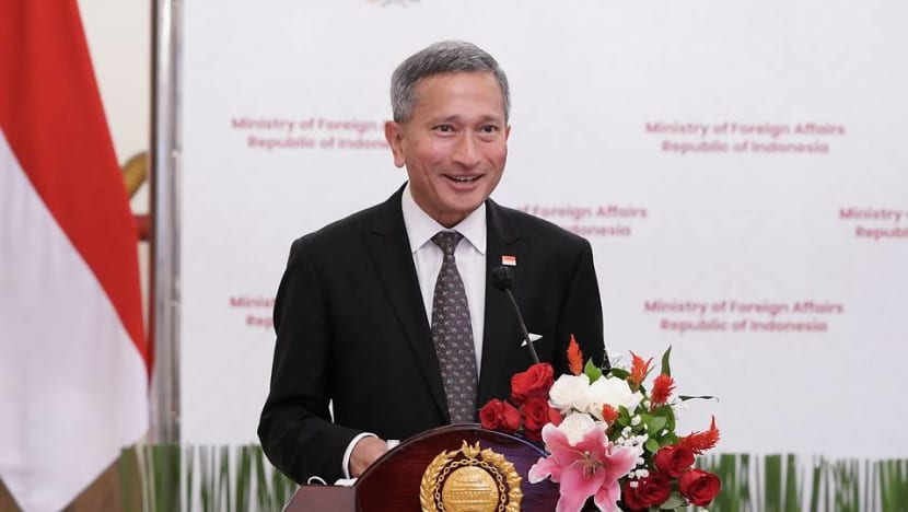 Singapore and Indonesia should have 'same level of control' over COVID-19 cases before travel resumes: Vivian Balakrishnan