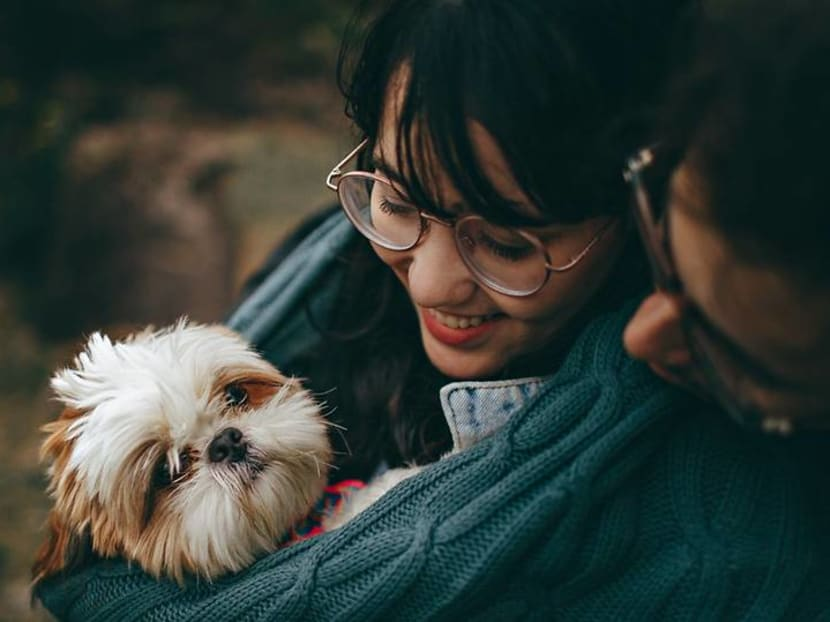 Losing a pet can be extremely hard. But can it also make you stronger?