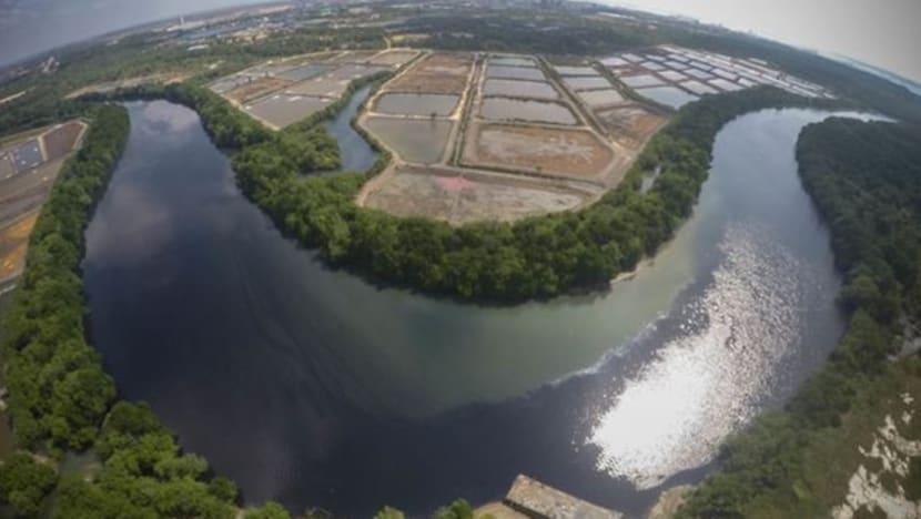 Pasir Gudang pollution: 160 Sungai Kim Kim victims to sue Johor state government