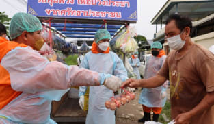 Thai monks bring groceries to the poor as COVID-19 pandemic hits incomes