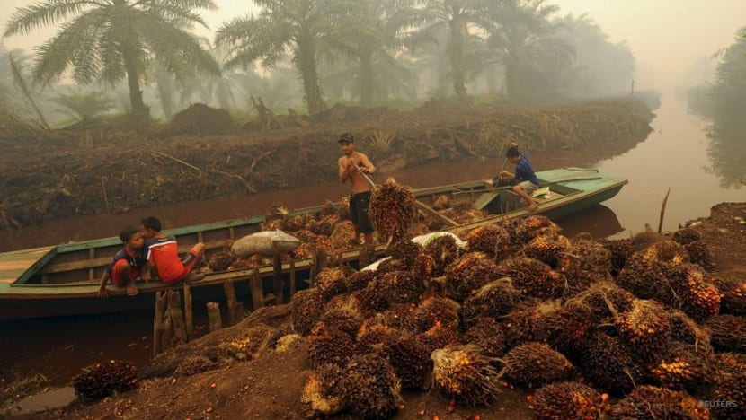 """Indonesia to stop export of crude palm oil """"at some point"""""""