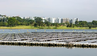 PUB launches S$6.5 million 'carbon zero' challenge to remove emissions from water treatment facilities