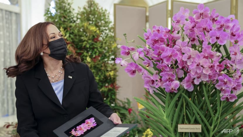 US Vice President Kamala Harris receives namesake orchid, official welcome at Istana