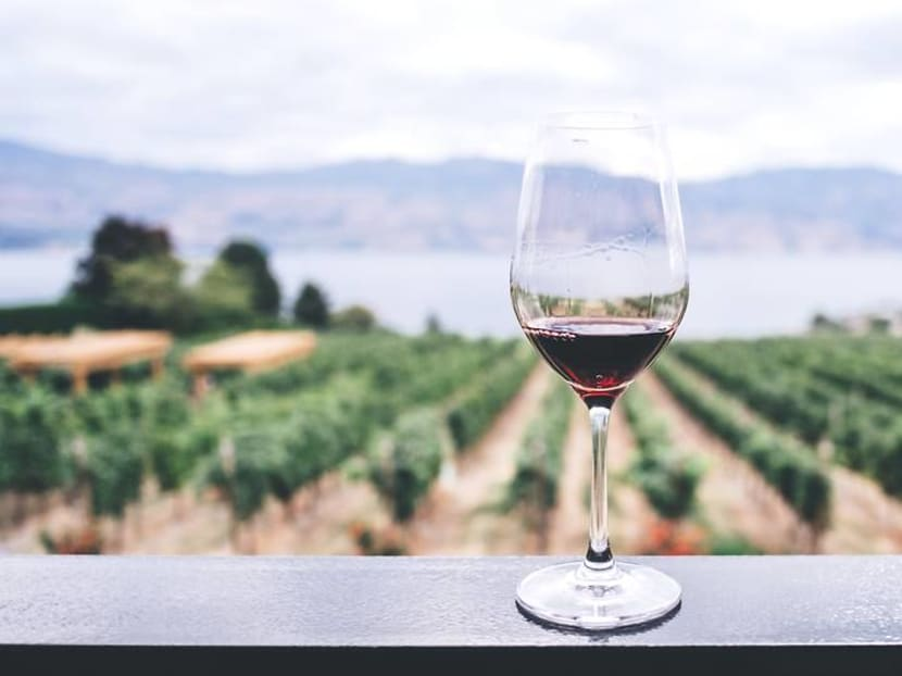 Wine investment: What to look out for and how much you'd need to start