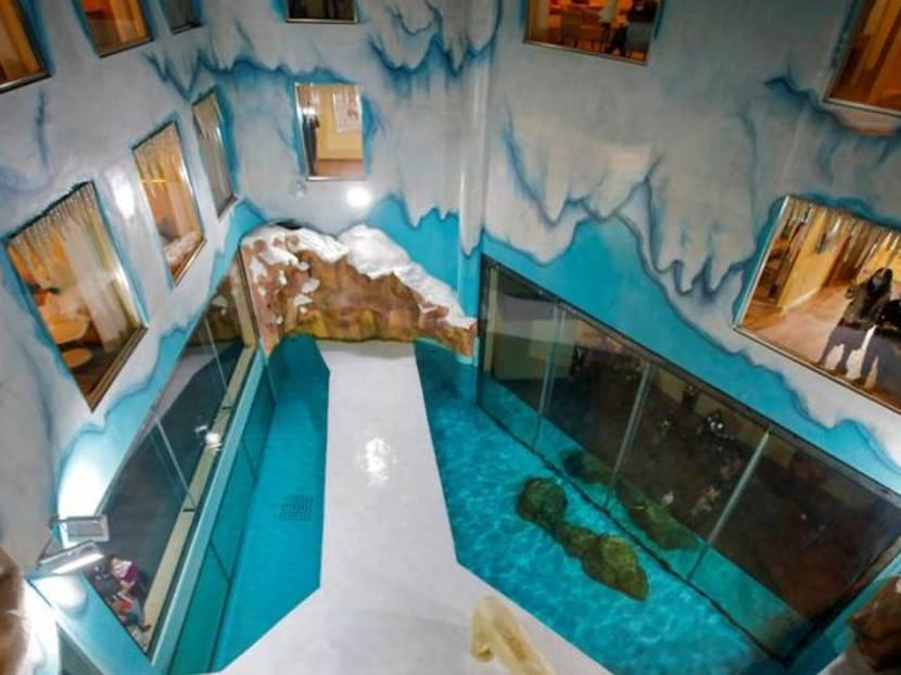'Polar bear hotel' in China opens to full bookings and a lot of criticism