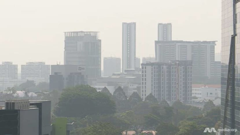 Singapore's air quality may enter 'unhealthy' range amid increase in Indonesia hotspots: NEA