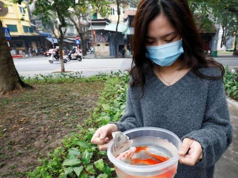 Carp diem: Vietnamese mark Lunar New Year with annual fish release