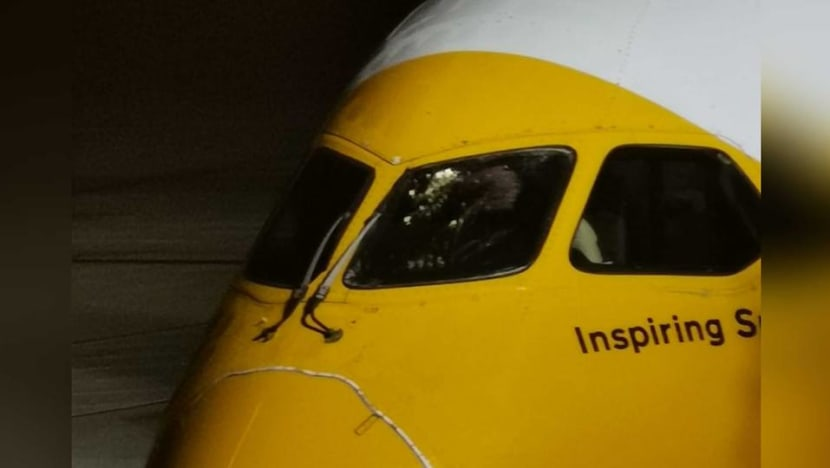 Damaged windshield forces Scoot flight to Gold Coast to turn back to Changi