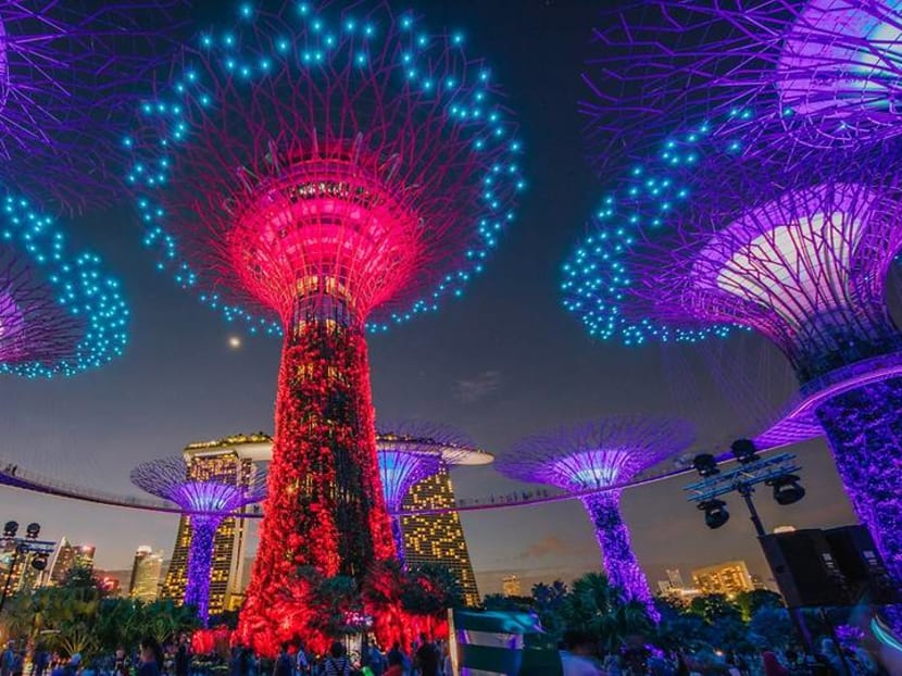 The show is back on: Supertrees light and sound display to return from Jan 8