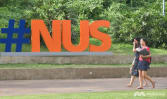 One staff member dismissed, two students expelled after 11 sexual misconduct complaints made in first half of 2021: NUS