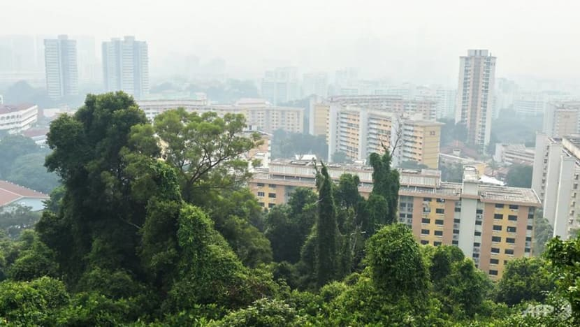 Singapore may experience haze in coming weeks and months: Met Service