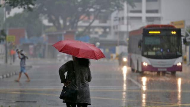 职总英康推出新保险 提供雨天召车车费保障