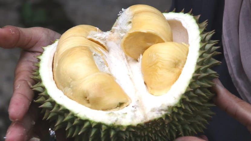 Durian, century eggs and stinky tofu feature in Sweden's Disgusting Food Museum