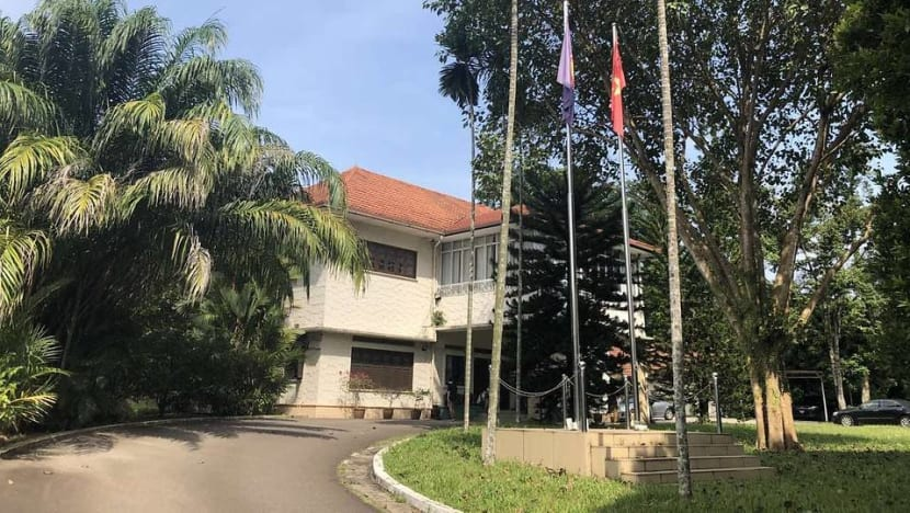 Vice activities by some Vietnamese in Singapore not representative of residents here: Embassy official