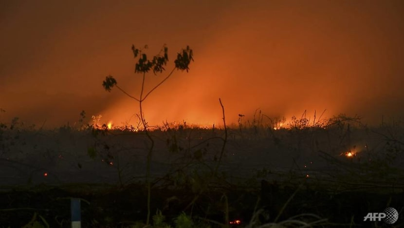 Indonesia arrests nearly 200 over raging forest fires