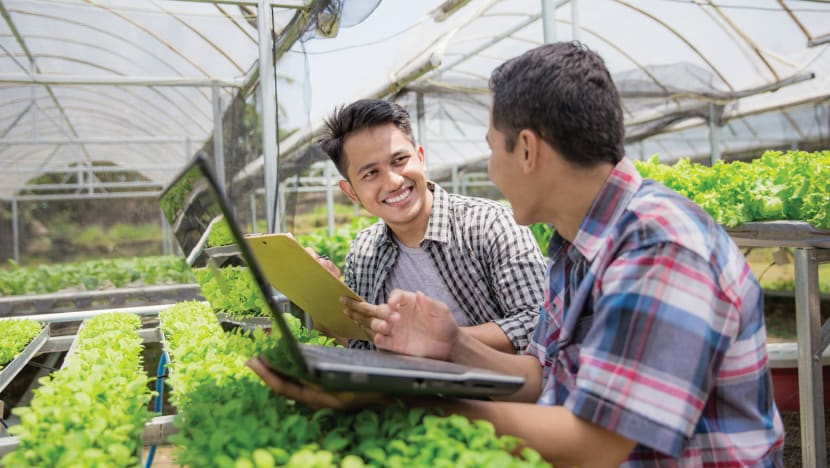 Bayer in Singapore: 50 years of science, improving lives around the region