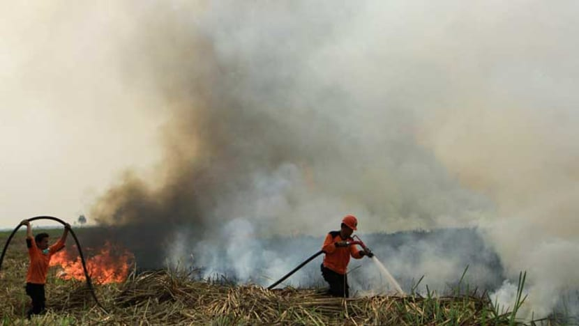 Death toll rises as millions in Indonesia suffer from raging forest fires