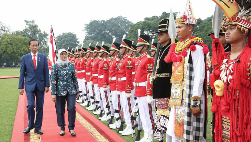 President Halimah meets counterpart Widodo in first state visit to Indonesia
