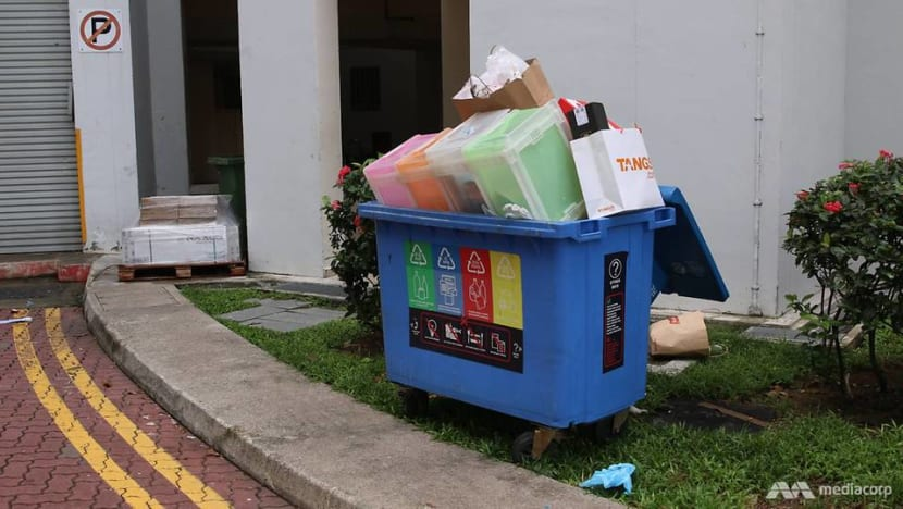 60% of Singaporean households recycle regularly, but many not doing it right: Surveys
