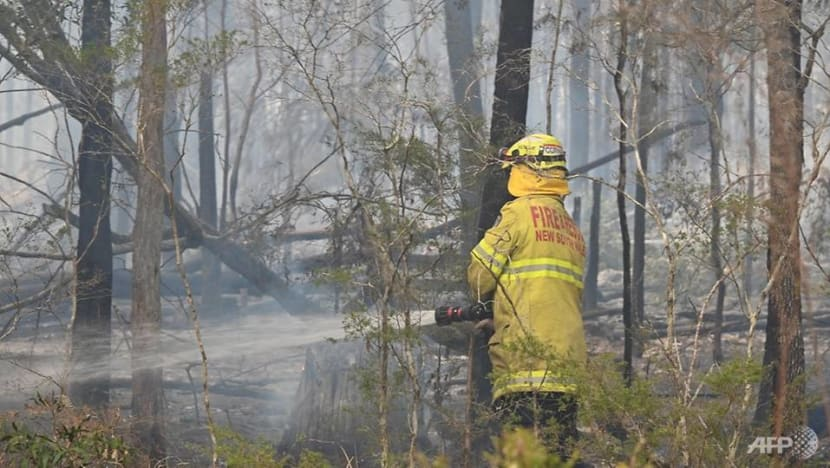 Sydney region faces 'catastrophic' bushfire threat