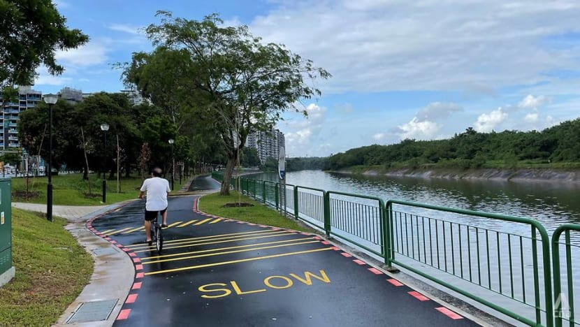 Commentary: Banning bicycles from footpaths won't make poor cycling habits disappear