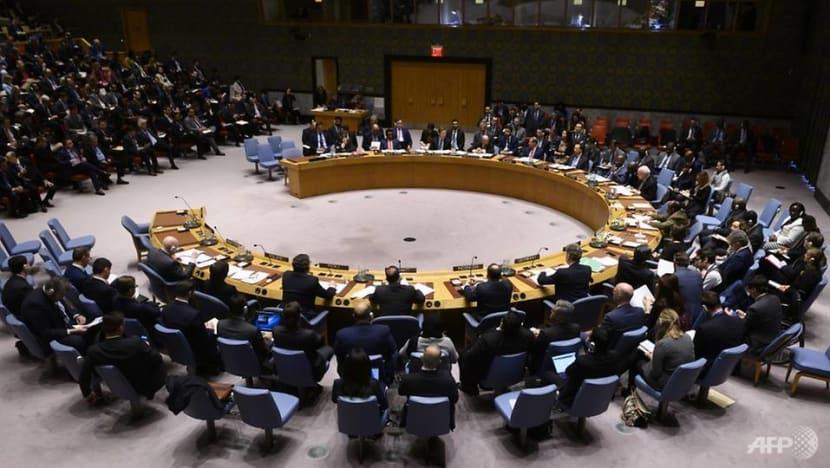 Estonia, Vietnam among five elected to UN Security Council