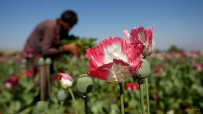 India seizes US$2.7 billion of heroin in haul from Afghanistan
