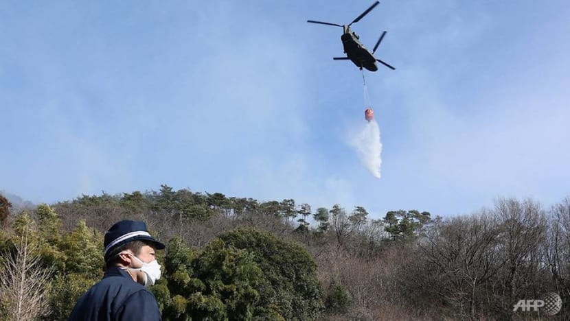 Japan wildfire rages for fifth day, more households to be urged to evacuate