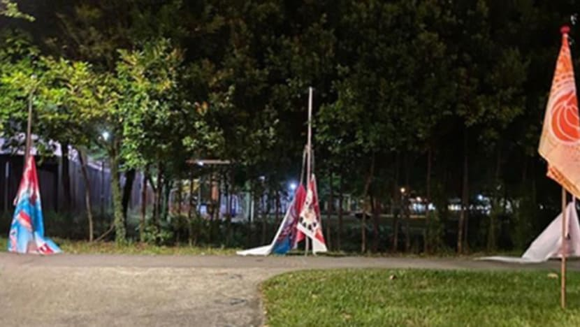 Man arrested for mischief, accused of damaging Singapore flags and banners in Punggol