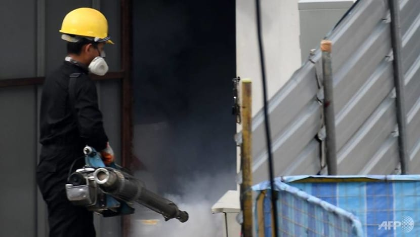 Construction firms rely on on-site workers, pest control companies to prevent mosquito breeding during circuit breaker