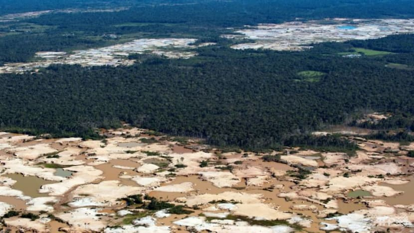 Close to tipping point, Amazon rainforest could collapse in 50 years