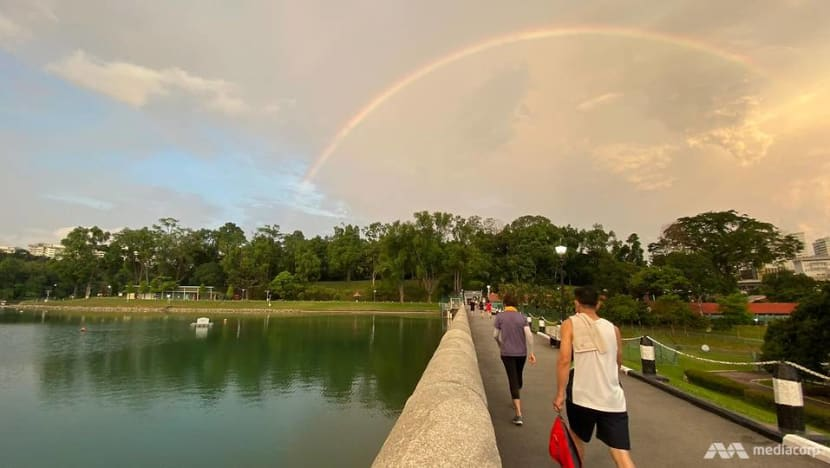 Going wild about nature: Long walks around Singapore an alternative to overseas travel
